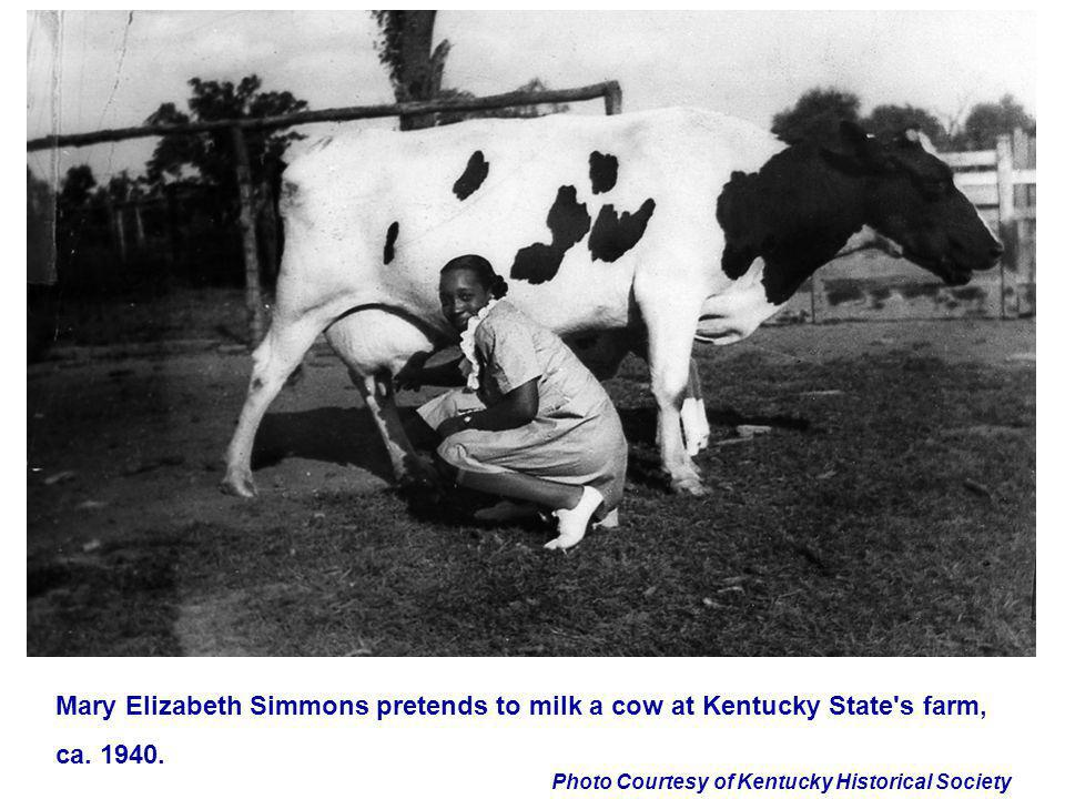 Photo Courtesy of Kentucky Historical Society Mary Elizabeth Simmons pretends to milk a cow at Kentucky State's farm, ca. 1940.