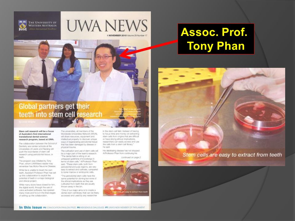 Assoc. Prof. Tony Phan