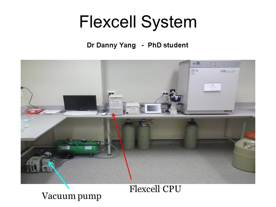 Flexcell System Vacuum pump Flexcell CPU Dr Danny Yang - PhD student