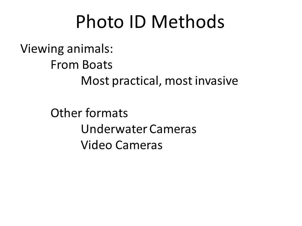 Photo Analysis Negatives, prints, digital images Tracings, eye, microscope Examine shape, markings, leading/trailing edge