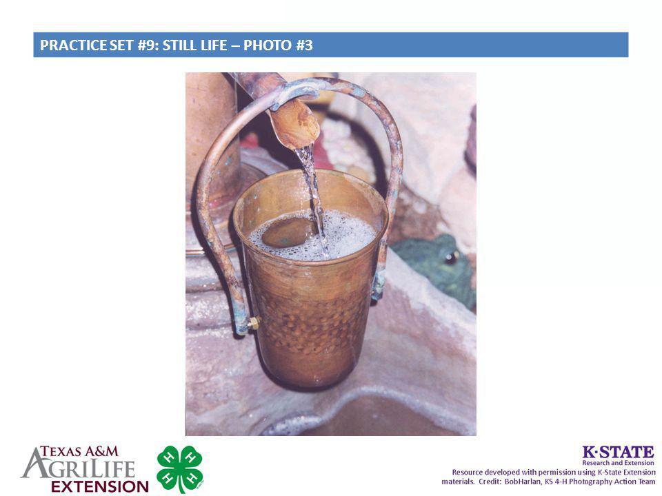PRACTICE SET #9: STILL LIFE – PHOTO #3