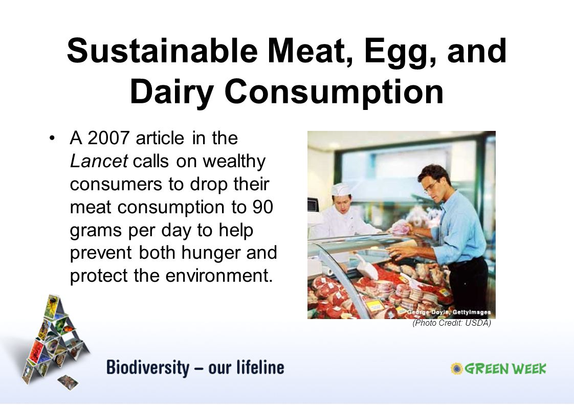 Sustainable Meat, Egg, and Dairy Consumption A 2007 article in the Lancet calls on wealthy consumers to drop their meat consumption to 90 grams per da