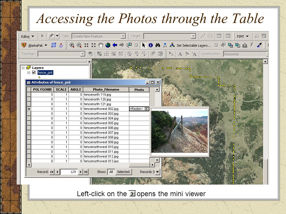 Accessing the Photos through the Table Left-click on the opens the mini viewer