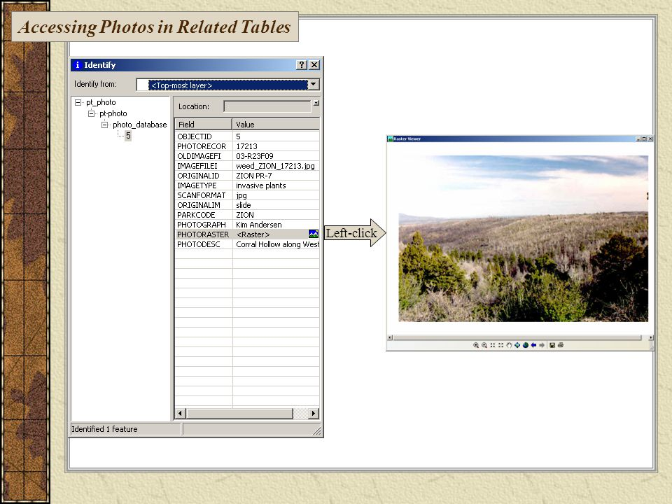 Left-click Accessing Photos in Related Tables