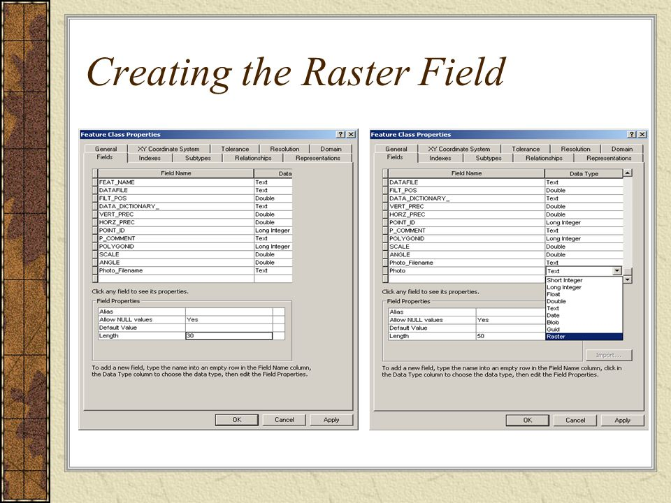 Creating the Raster Field