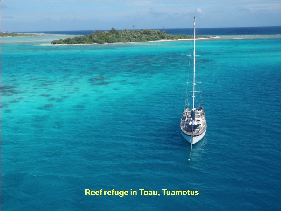 Reef refuge in Toau, Tuamotus