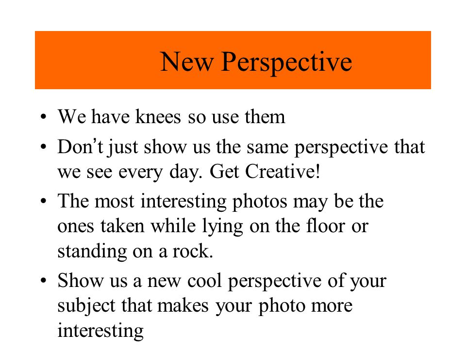 New Perspective We have knees so use them Dont just show us the same perspective that we see every day.