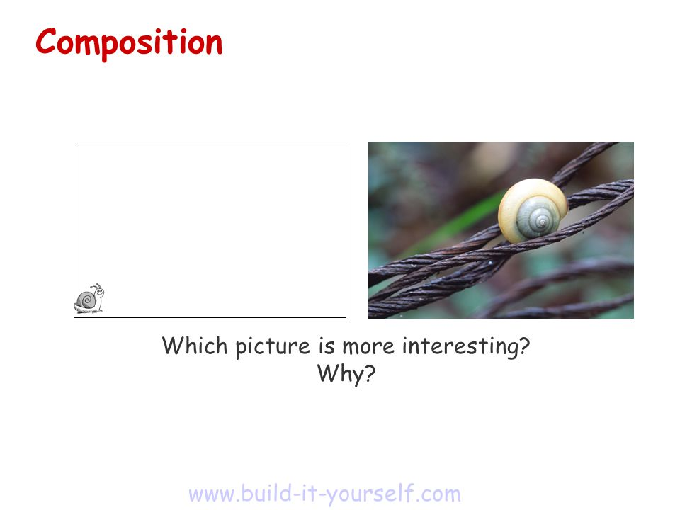 Which picture is more interesting Why www.build-it-yourself.com Composition