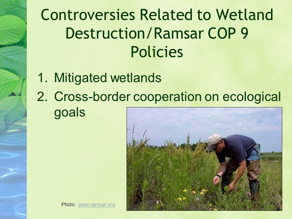 Controversies Related to Wetland Destruction/Ramsar COP 9 Policies 1.Mitigated wetlands 2.Cross-border cooperation on ecological goals Photo: www.rams