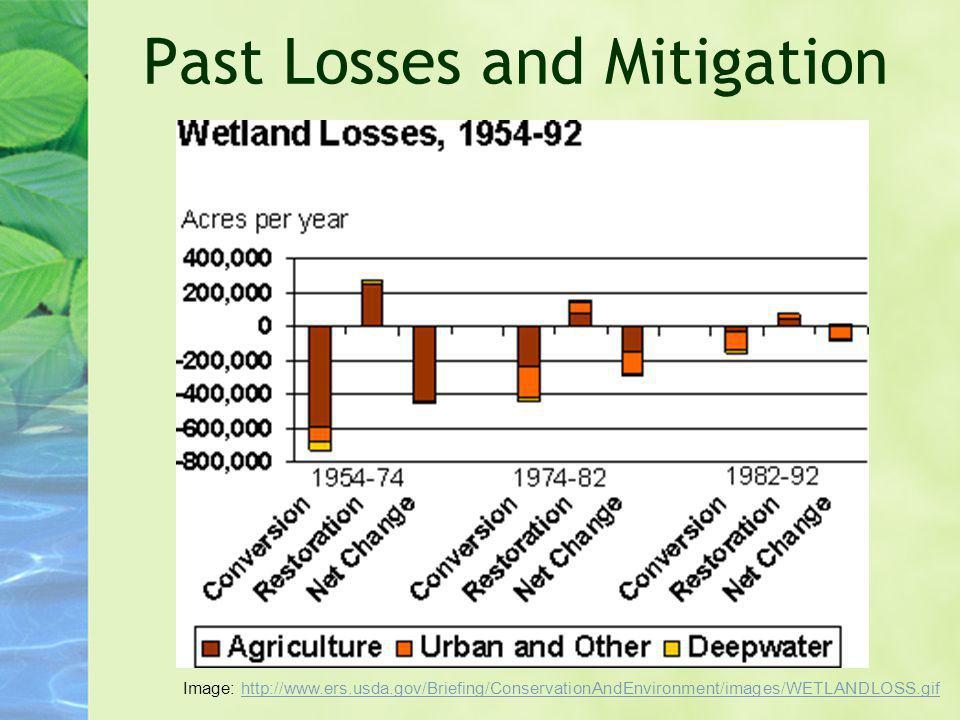 Past Losses and Mitigation Image: http://www.ers.usda.gov/Briefing/ConservationAndEnvironment/images/WETLANDLOSS.gifhttp://www.ers.usda.gov/Briefing/C