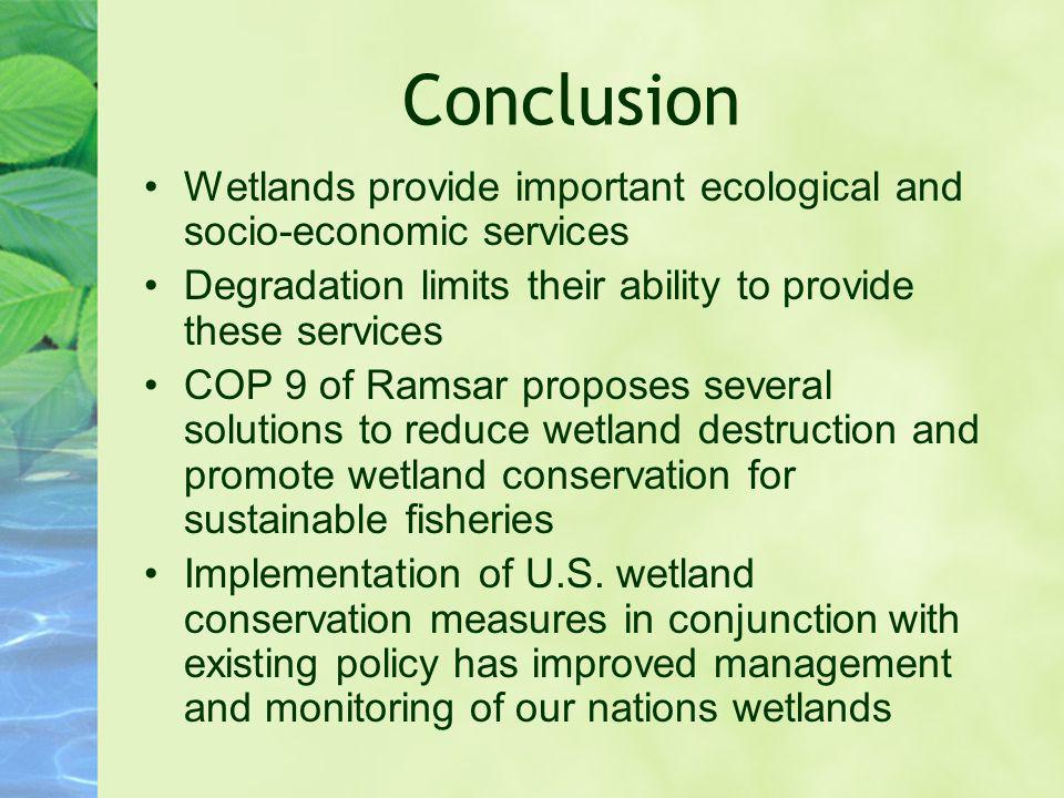 Conclusion Wetlands provide important ecological and socio-economic services Degradation limits their ability to provide these services COP 9 of Ramsa