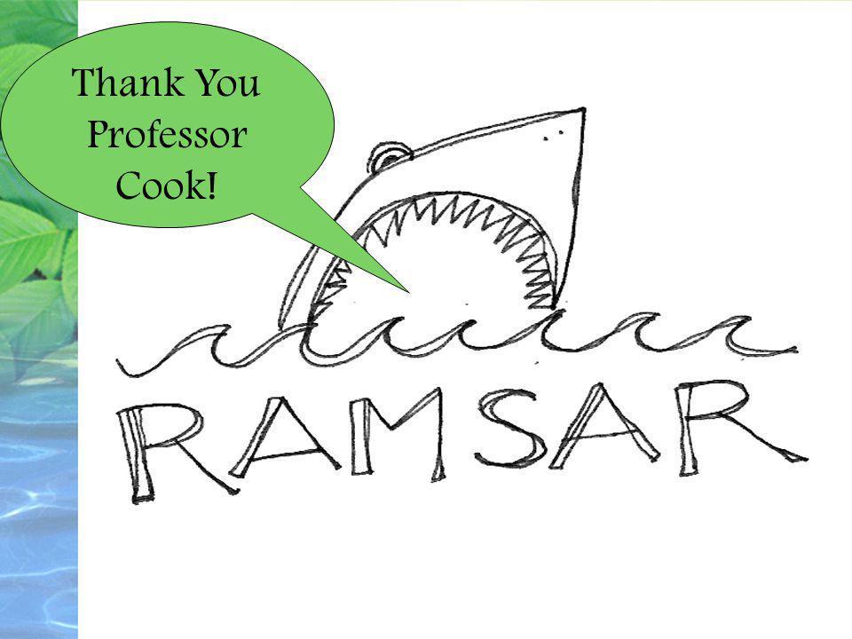 Thank You Professor Cook!