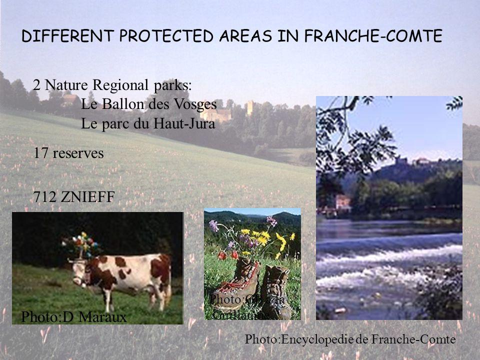 DIFFERENT PROTECTED AREAS IN FRANCHE-COMTE 2 Nature Regional parks: Le Ballon des Vosges Le parc du Haut-Jura 17 reserves 712 ZNIEFF Photo:Encyclopedie de Franche-Comte Photo:GB a la Guillaume Photo:D Maraux