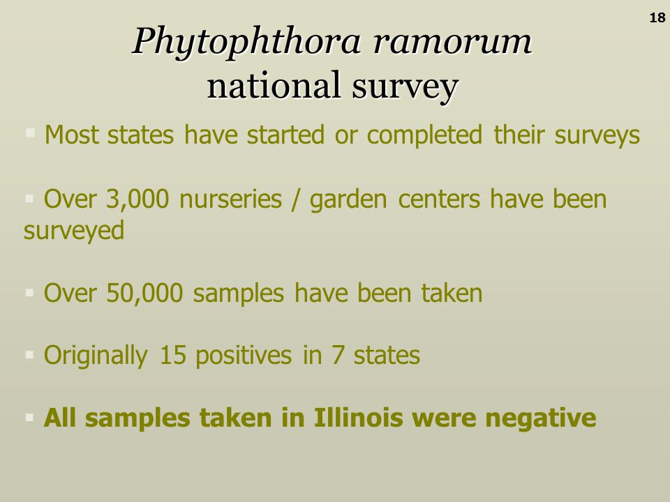 Phytophthora ramorum national survey Most states have started or completed their surveys Over 3,000 nurseries / garden centers have been surveyed Over