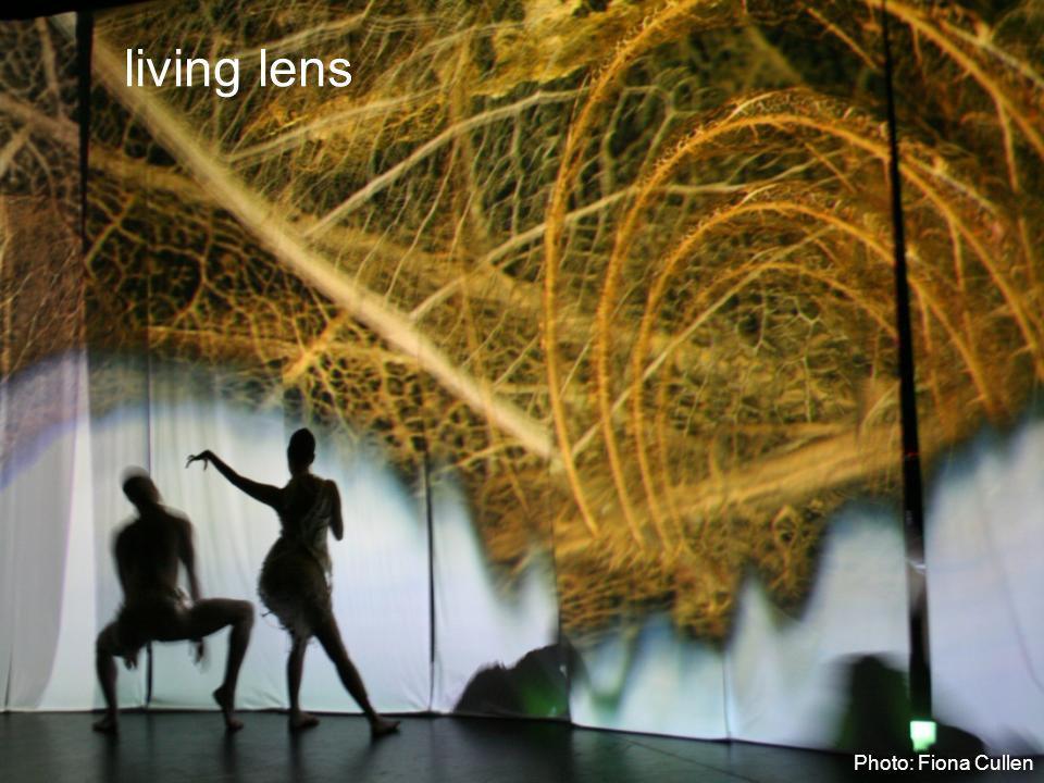 living lens Photo: Fiona Cullen
