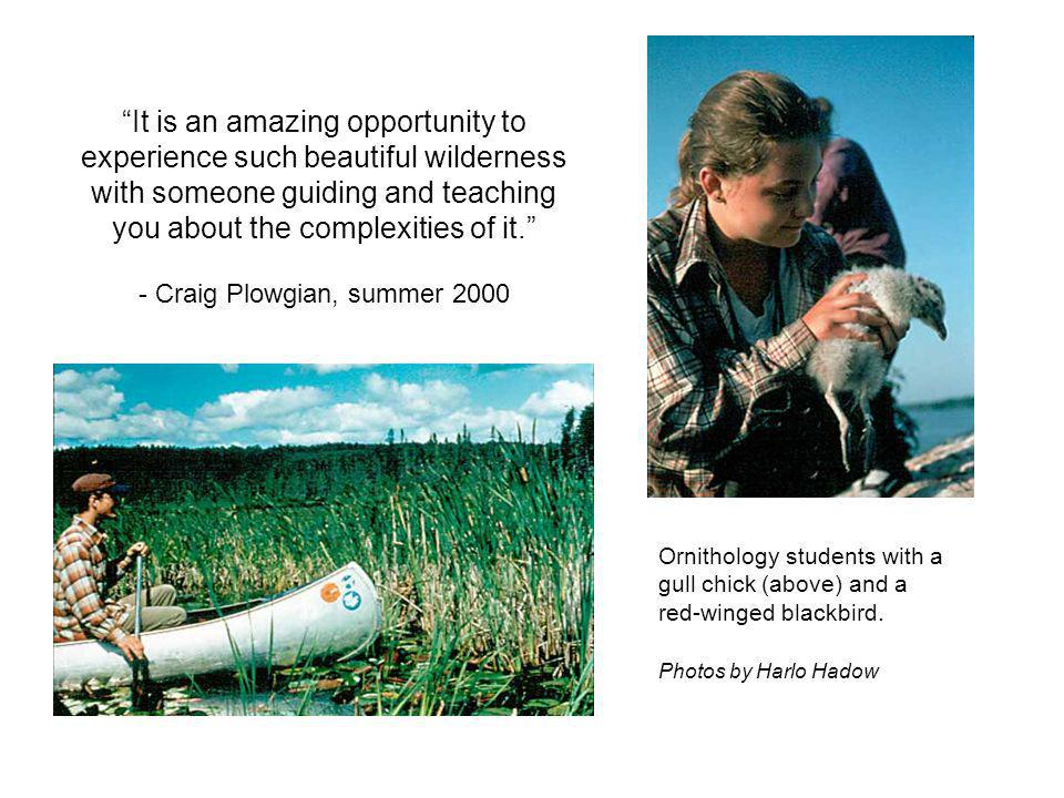 Ornithology students with a gull chick (above) and a red-winged blackbird.