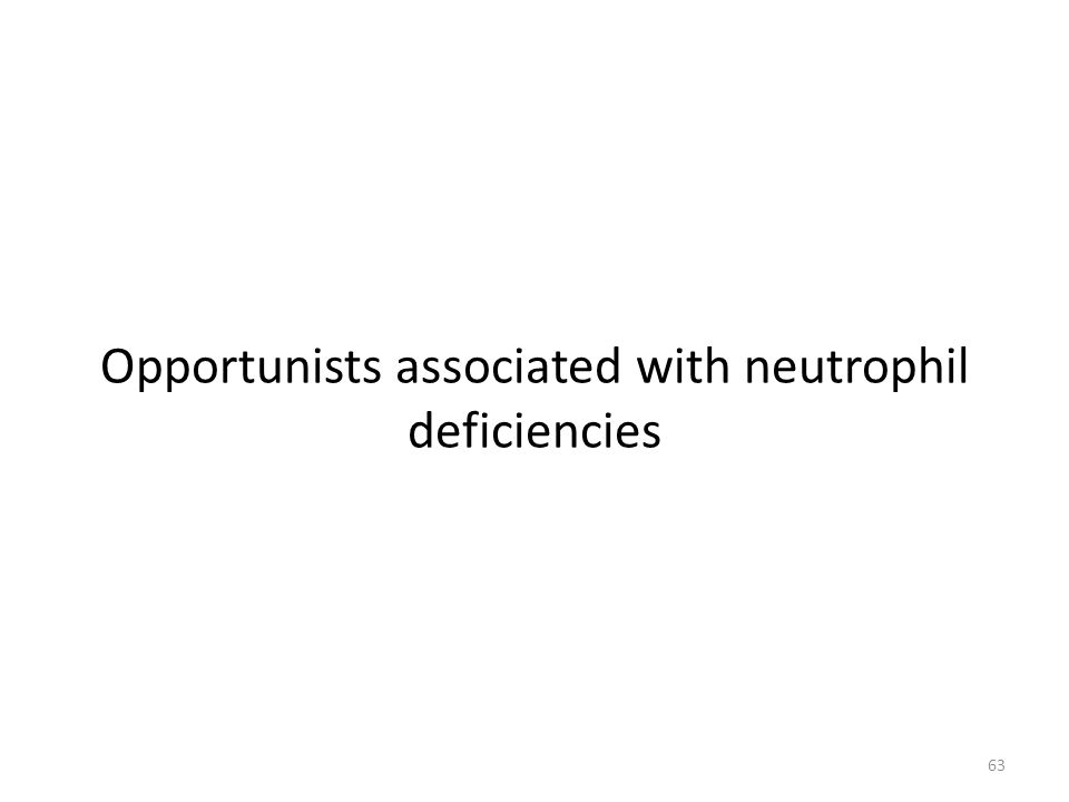 63 Opportunists associated with neutrophil deficiencies