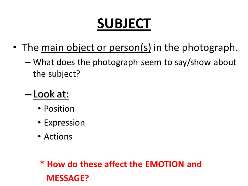SUBJECT The main object or person(s) in the photograph.