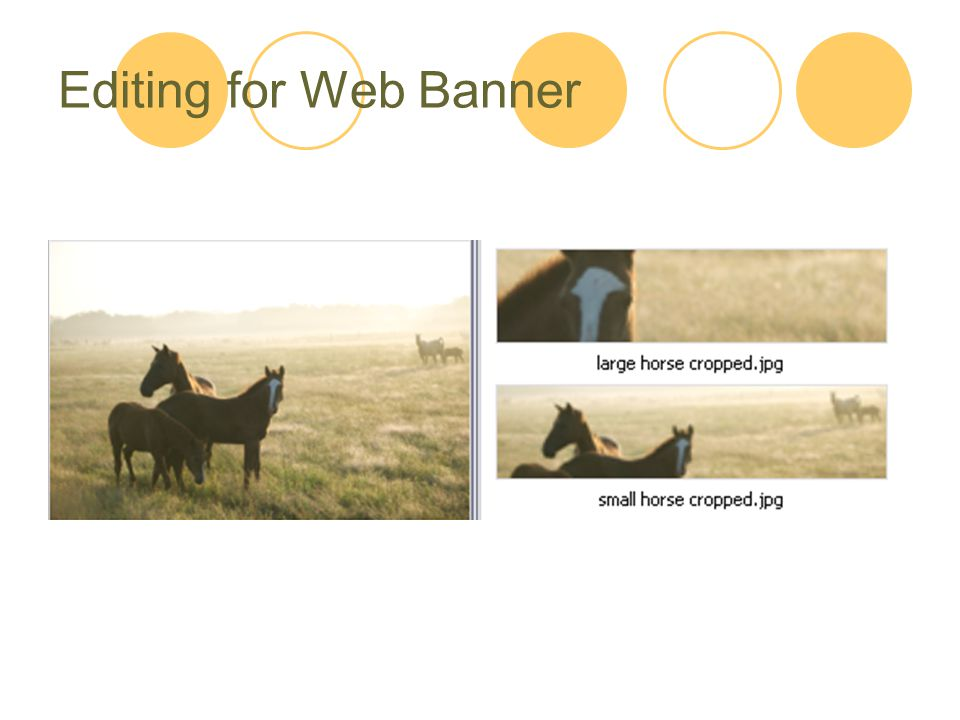 Editing for Web Banner