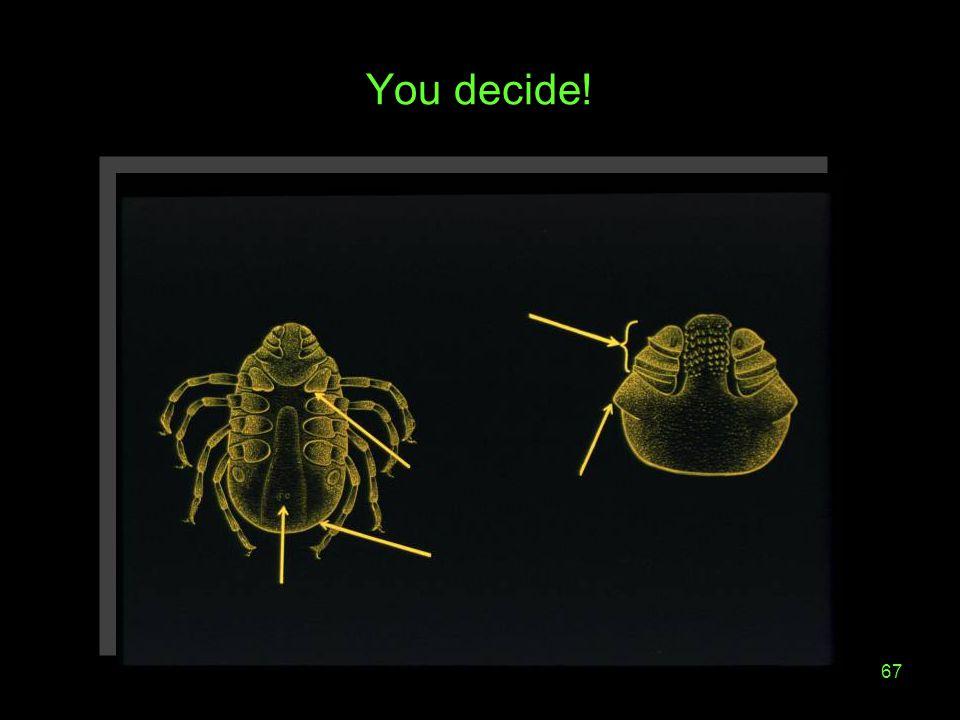 67 You decide!