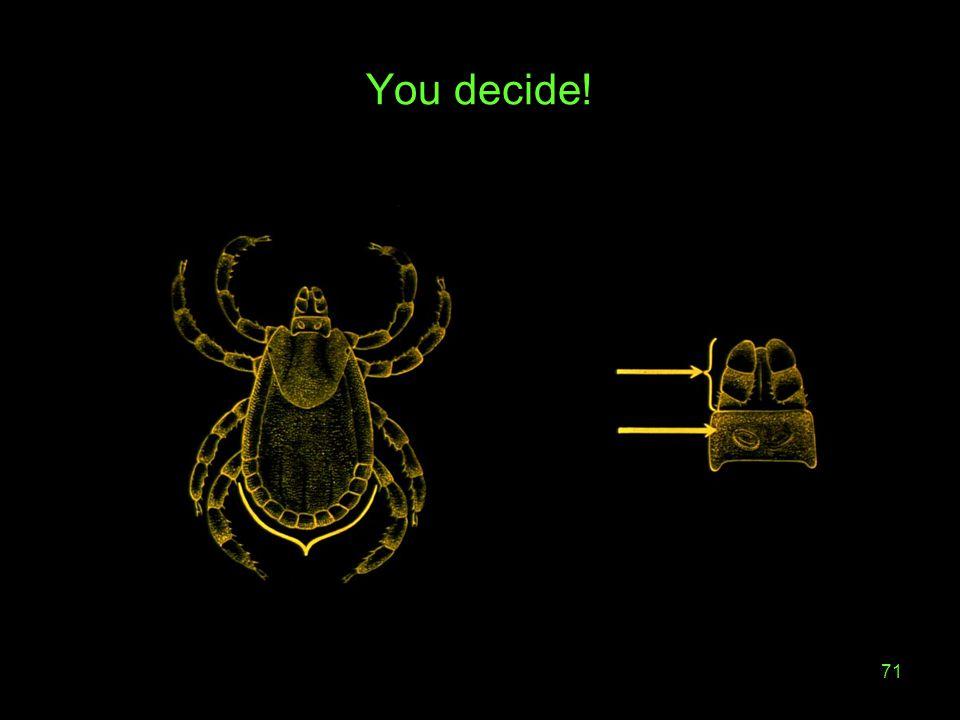 71 You decide!