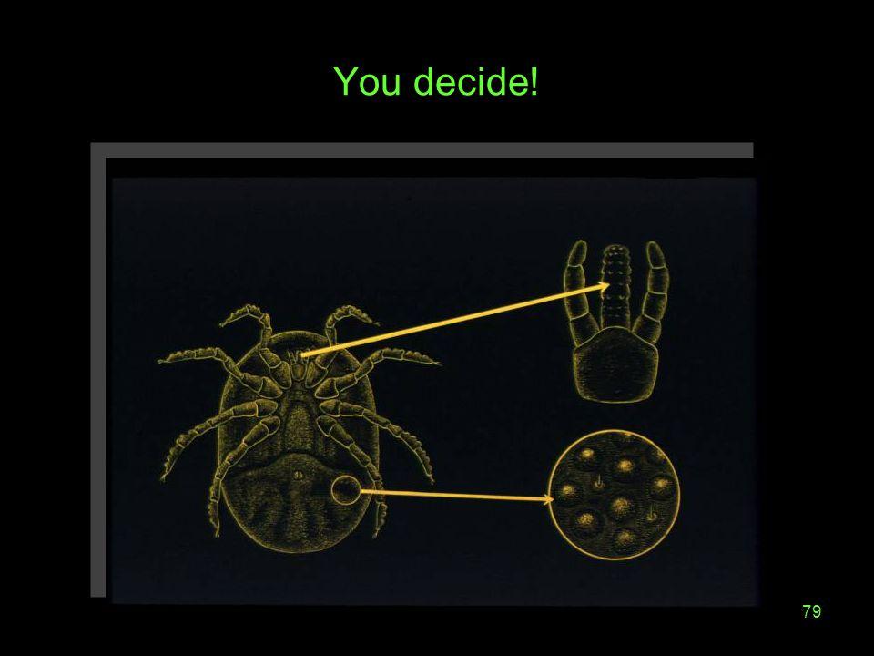 79 You decide!