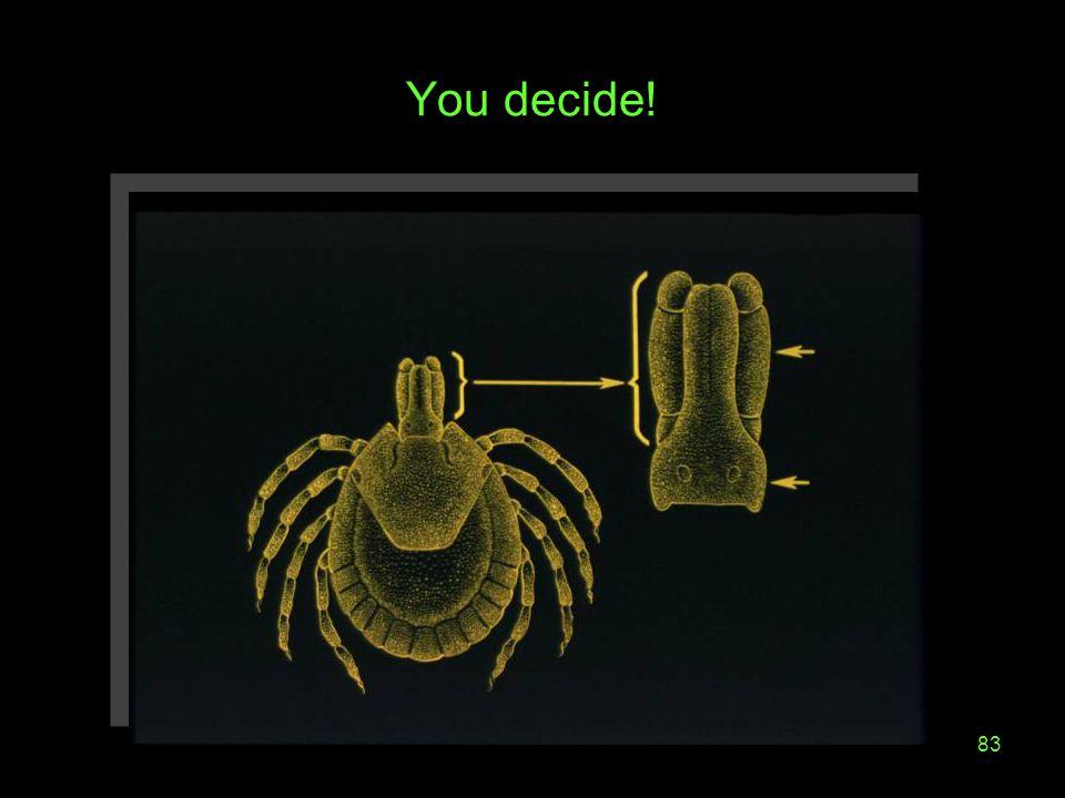 83 You decide!