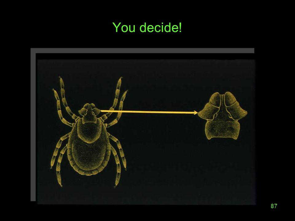 87 You decide!