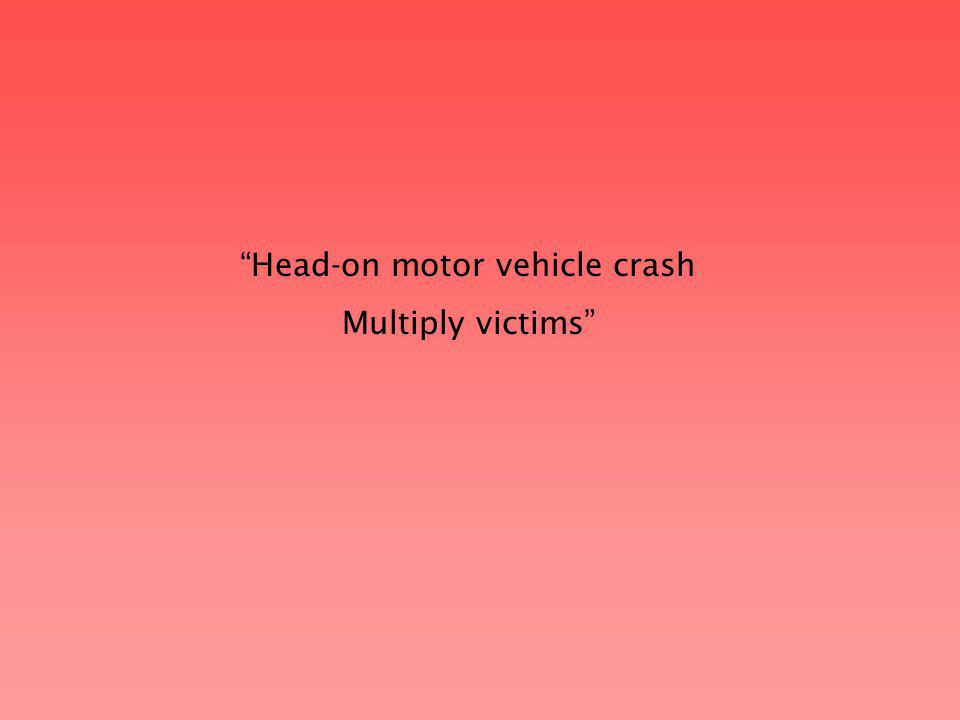 Head-on motor vehicle crash Multiply victims