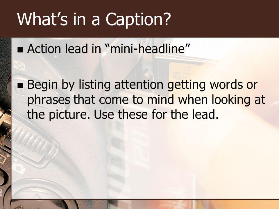 Whats in a Caption? Basic information Who What Where When