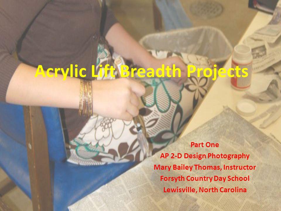 Sebi Prandoni Senior 2007- 2008 AP 2-D Design Photography Acrylic Lift onto Plant Pot with painting underneath