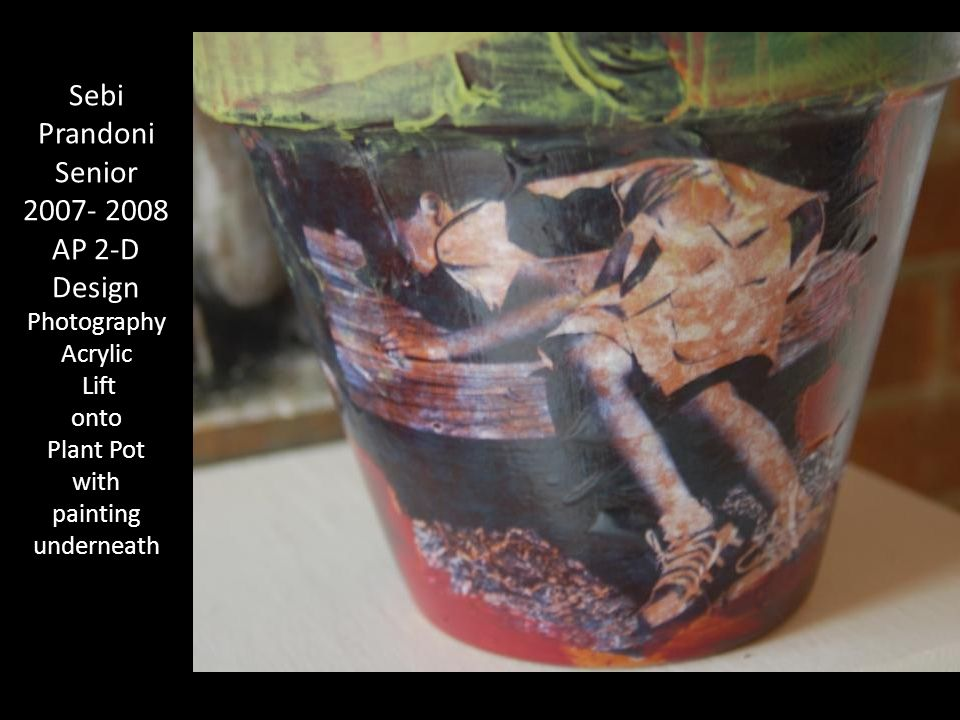 Sebi Prandoni Senior 2007- 2008 AP 2-D Design Photography Acrylic Lift onto Plant Pot with painting underneath