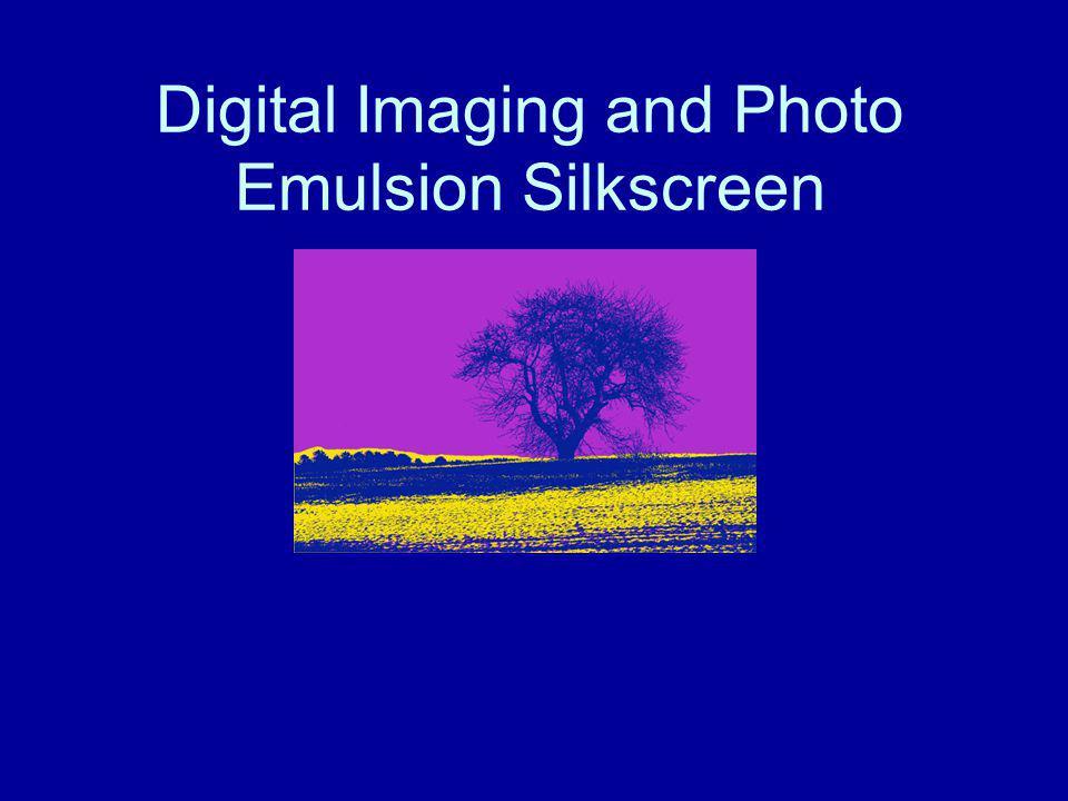 Digital Imaging and Photo Emulsion Silkscreen