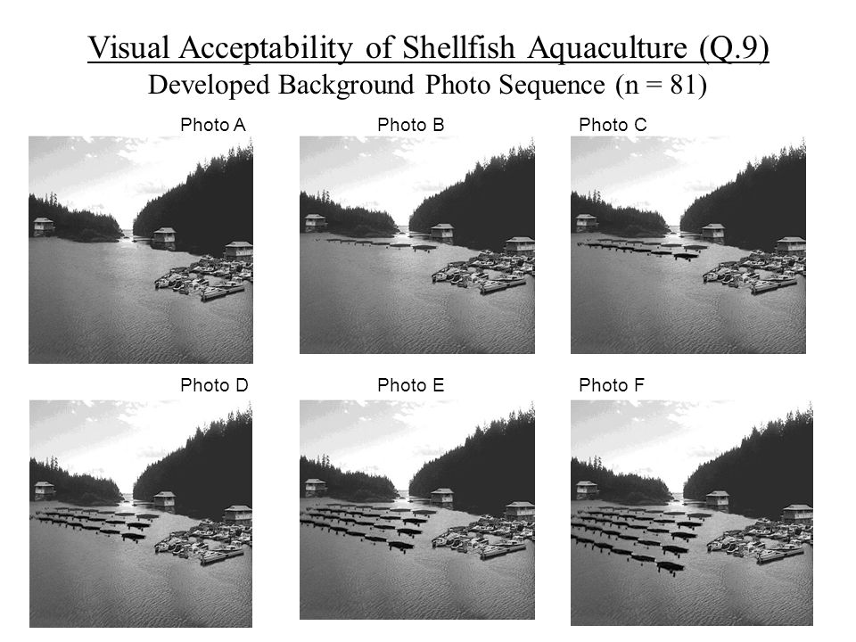 Visual Acceptability of Shellfish Aquaculture (Q.9) Developed Background Photo Sequence (n = 81) Photo A Photo B Photo C Photo D Photo E Photo F