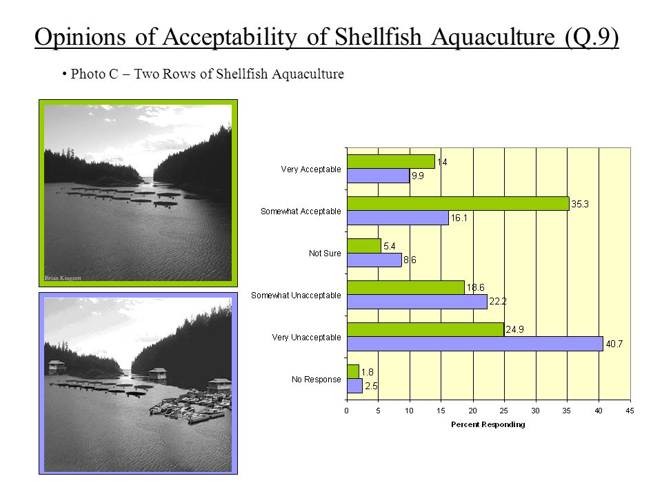 Opinions of Acceptability of Shellfish Aquaculture (Q.9) Photo C – Two Rows of Shellfish Aquaculture