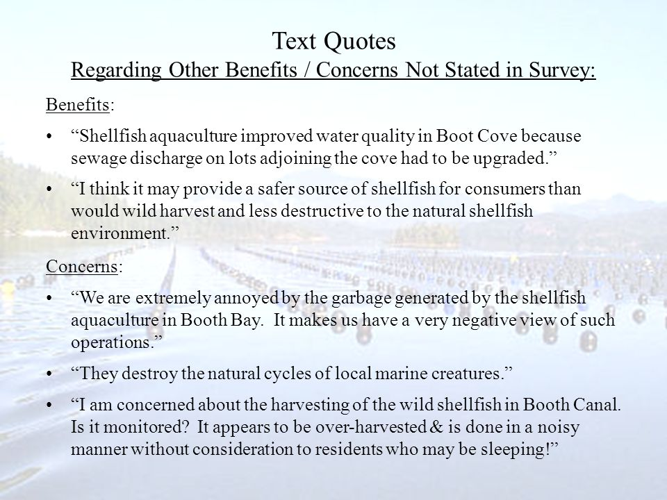 Text Quotes Regarding Other Benefits / Concerns Not Stated in Survey: Benefits: Shellfish aquaculture improved water quality in Boot Cove because sewage discharge on lots adjoining the cove had to be upgraded.