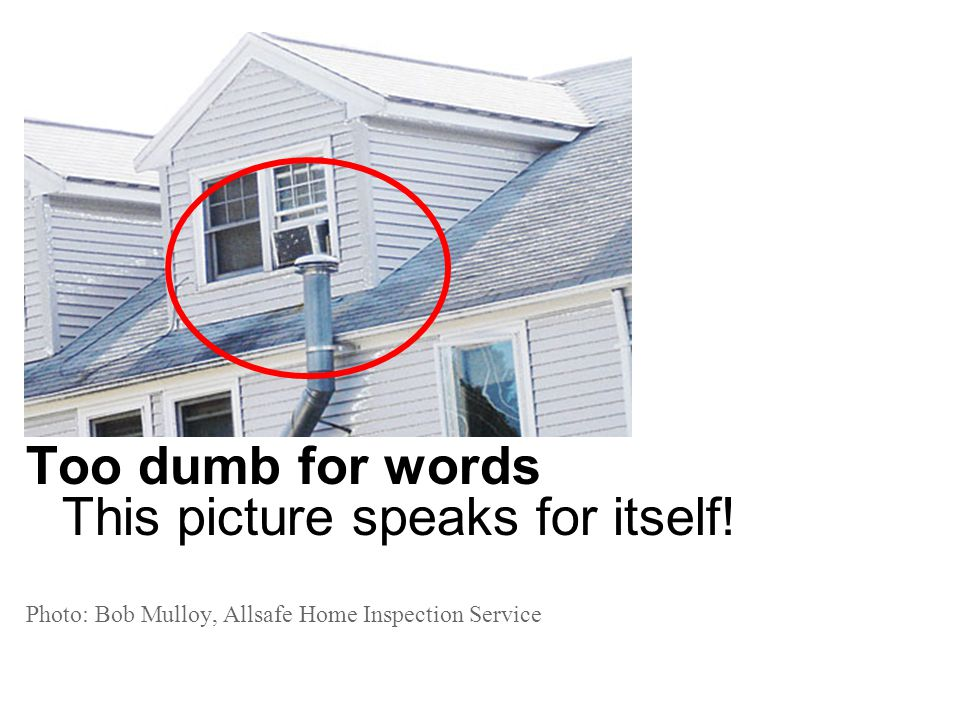 Too dumb for words This picture speaks for itself! Photo: Bob Mulloy, Allsafe Home Inspection Service