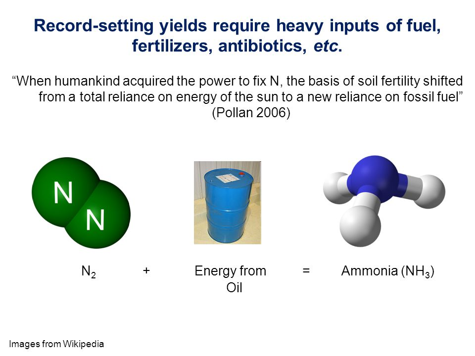 Images from Wikipedia Record-setting yields require heavy inputs of fuel, fertilizers, antibiotics, etc.