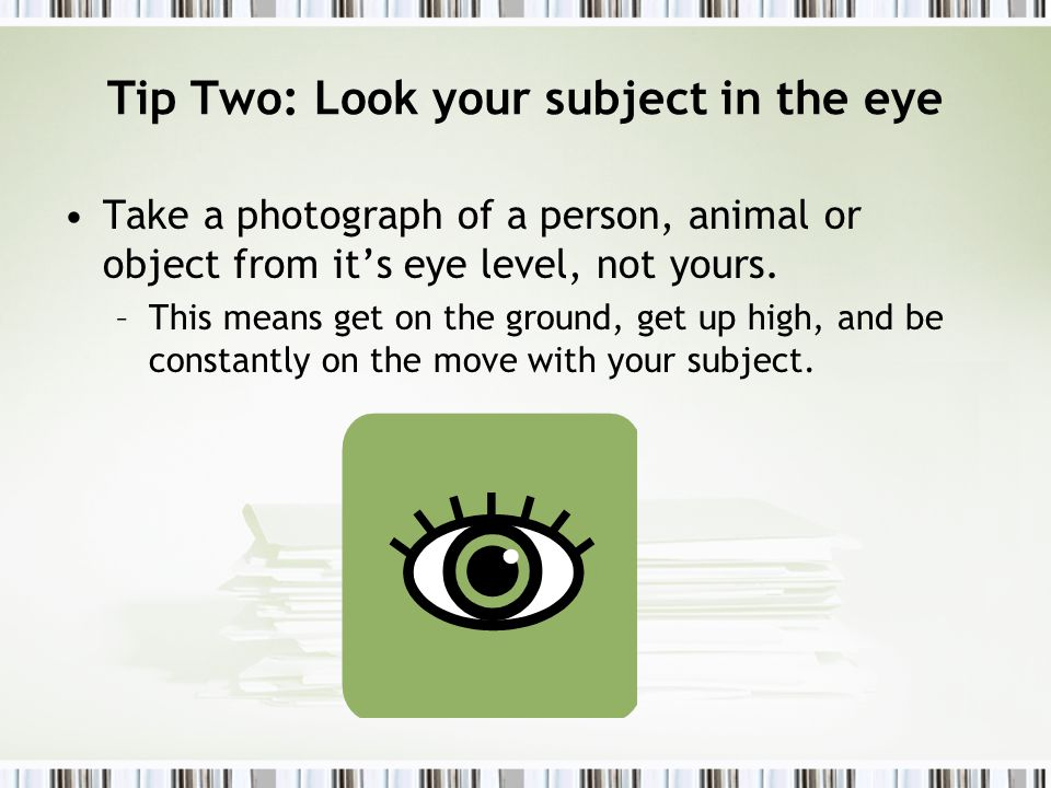 Tip Two: Look your subject in the eye Take a photograph of a person, animal or object from its eye level, not yours.