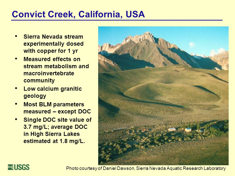 Convict Creek, California, USA Sierra Nevada stream experimentally dosed with copper for 1 yr Measured effects on stream metabolism and macroinvertebr