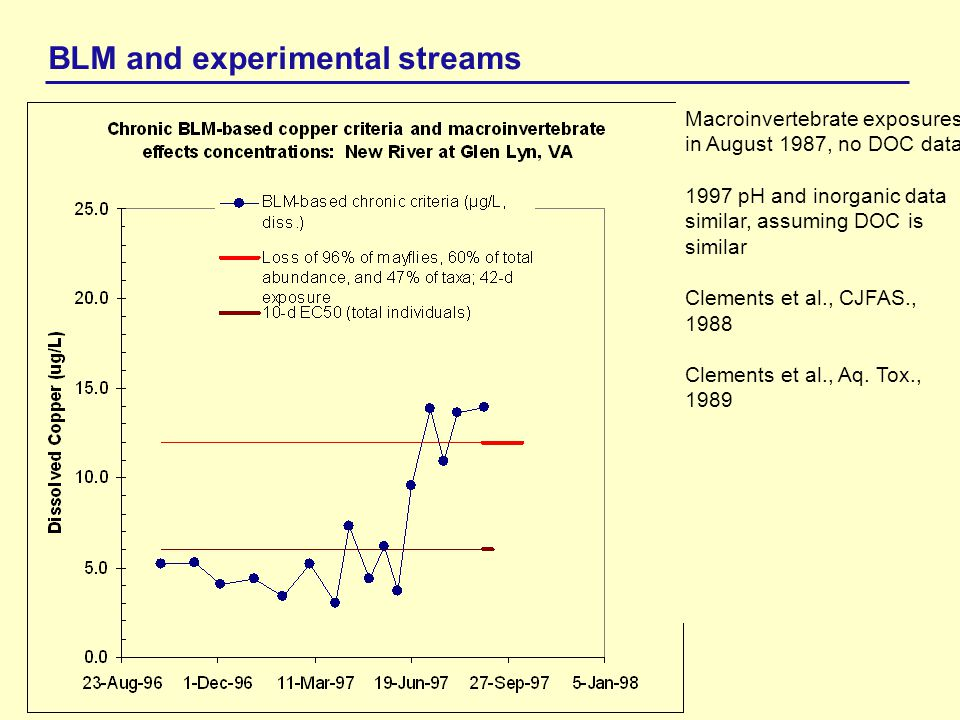 BLM and experimental streams New River near Blacksburg, VA, New River Valley Bird Club Macroinvertebrate exposures in August 1987, no DOC data.