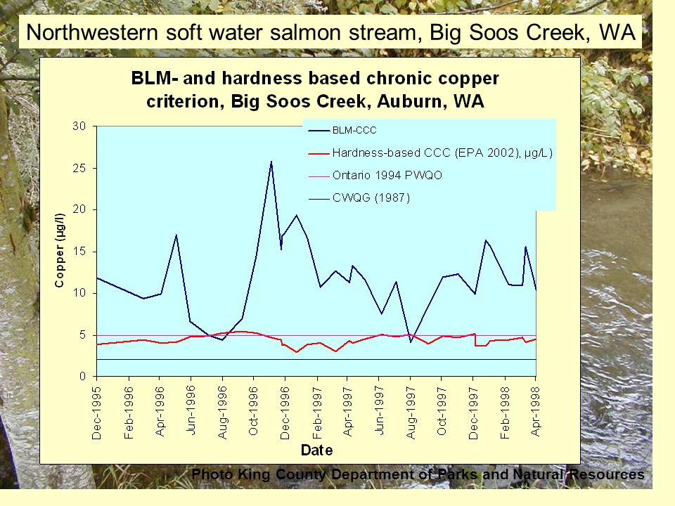 Northwestern soft water salmon stream, Big Soos Creek, WA Photo King County Department of Parks and Natural Resources