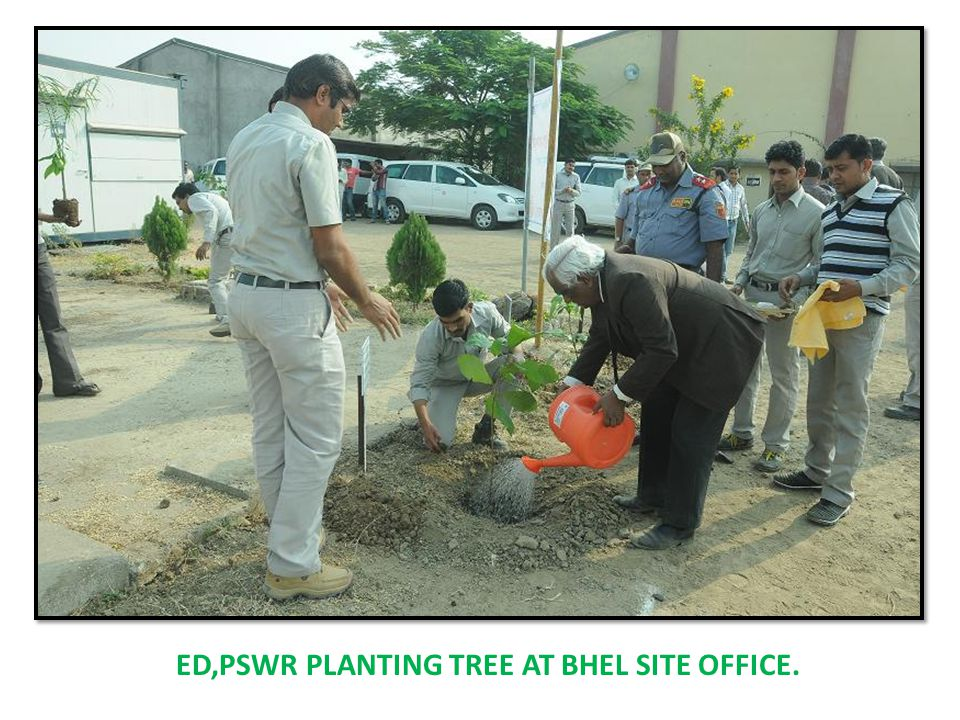 ED,PSWR PLANTING TREE AT BHEL SITE OFFICE.