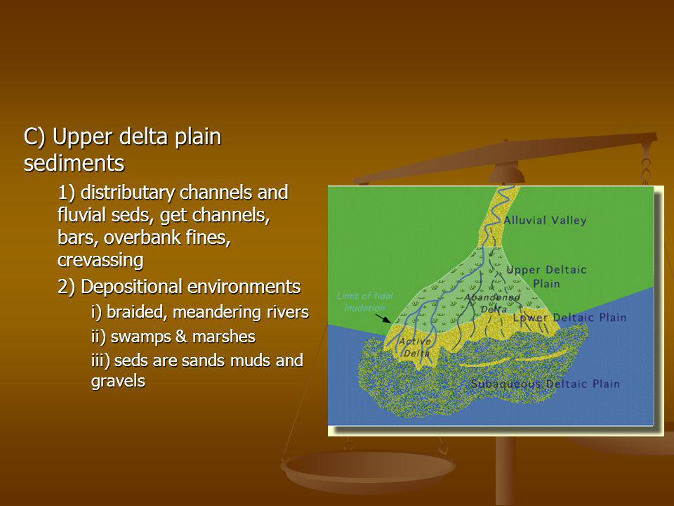 C) Upper delta plain sediments 1) distributary channels and fluvial seds, get channels, bars, overbank fines, crevassing 2) Depositional environments