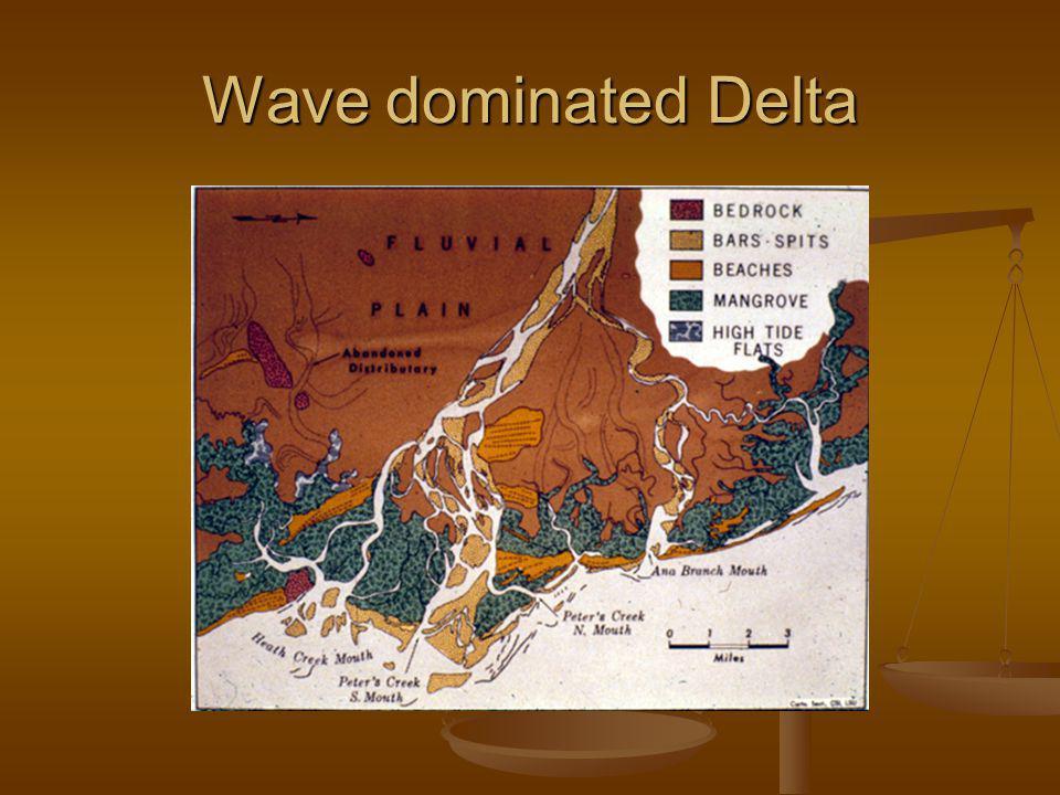 Wave dominated Delta