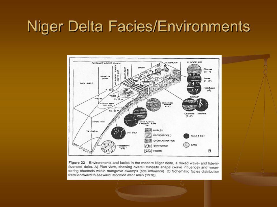 Niger Delta Facies/Environments