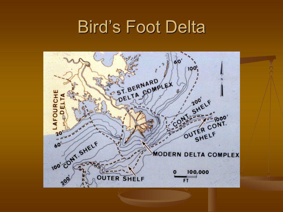 Birds Foot Delta