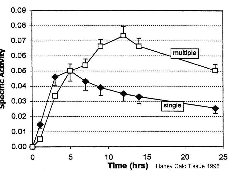 Haney Cal Tissue 1998Haney Calc Tissue 1998