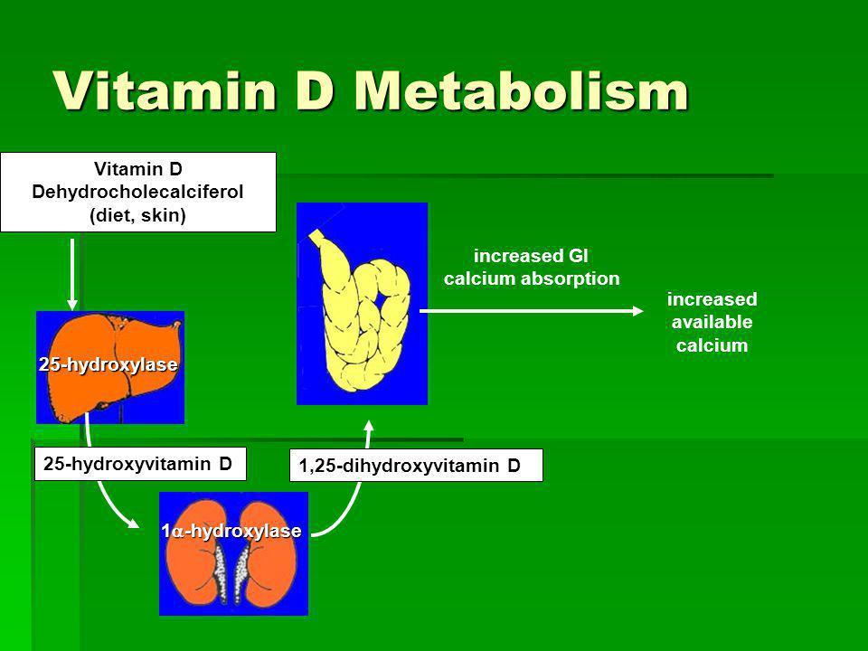 Vitamin D Metabolism Vitamin D Dehydrocholecalciferol (diet, skin) 25-hydroxylase 1 -hydroxylase 25-hydroxyvitamin D 1,25-dihydroxyvitamin D increased