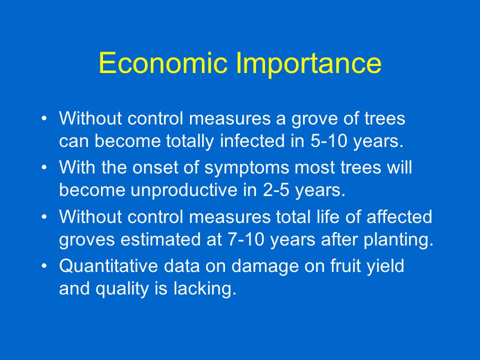 Economic Importance Without control measures a grove of trees can become totally infected in 5-10 years. With the onset of symptoms most trees will be